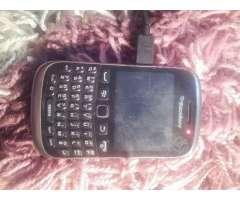 Celular BlackBerry, Región Metropolitana
