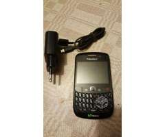 Blackberry - Punta Arenas